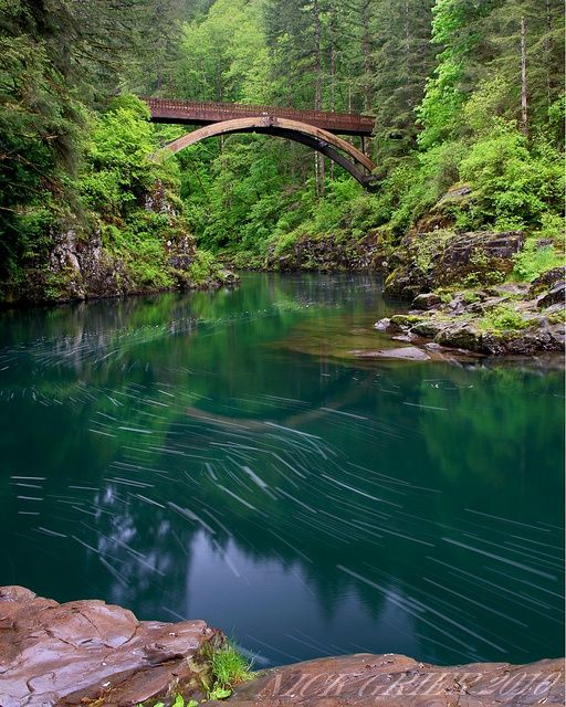 Moulton Falls, Battle Ground, WA, near Battle Ground State Park. Need to Check this one Out!                                                                                                                                                     More
