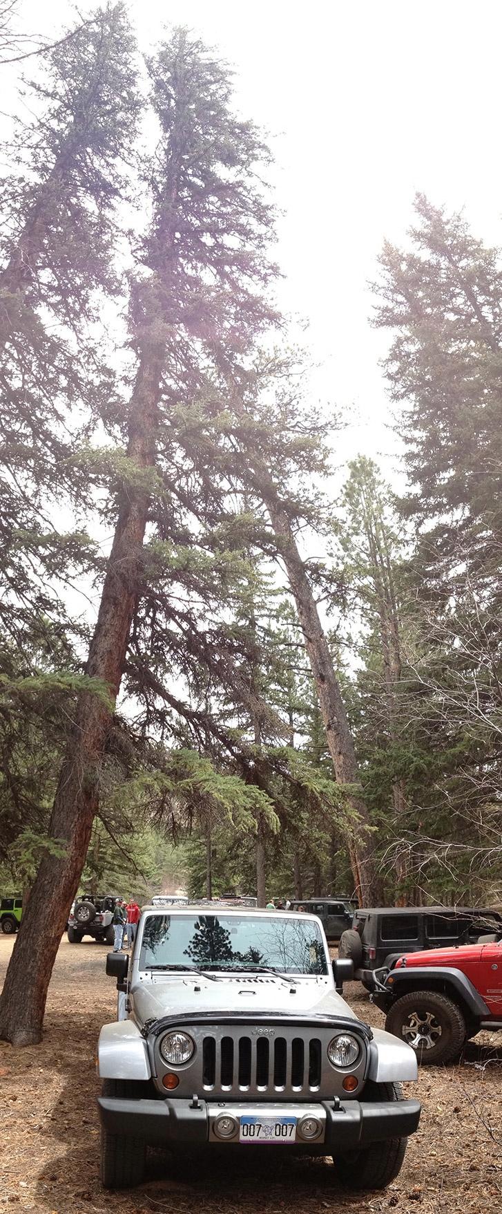 Jeep Wranger | Oscar Mike edition | Colorado Jeep Trail | China Wall