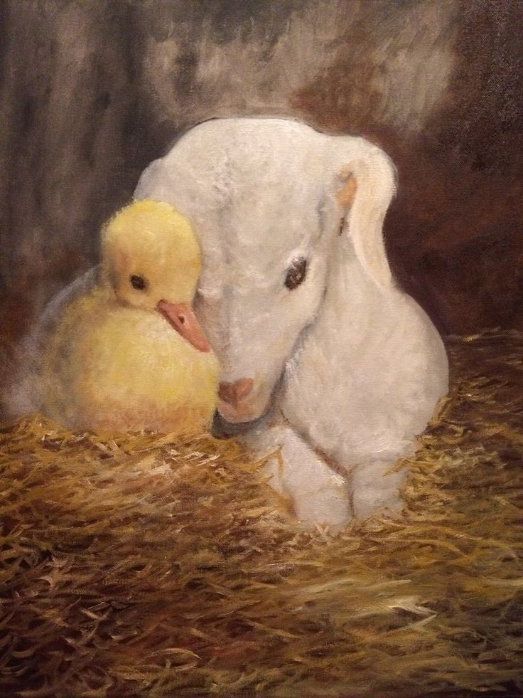 Ducky and Lamb(Original Painting)