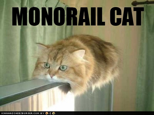 lolcatLol Cat, Monorail Cat, Funny Cat, Lolcats, Funny Stuff, Funny Animal, So Funny, Kitty, Monorailcat