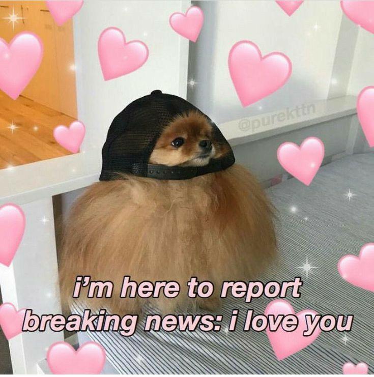 Rejected Omega Cute Memes Love Memes Cute Love Memes