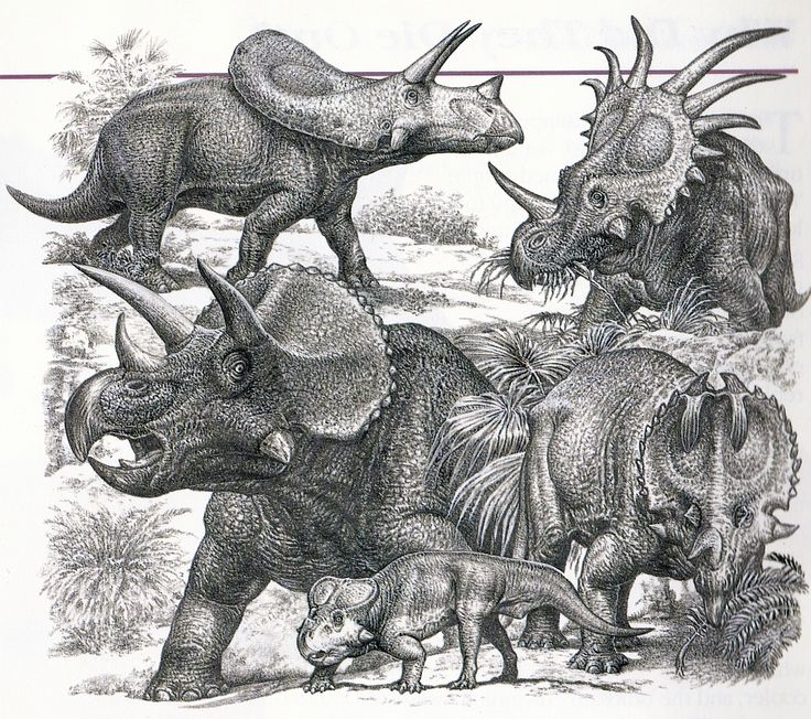 Love in the Time of Chasmosaurs: Vintage Dinosaur Art: Dinosaurs - Living Monsters of the Past (Part 1)