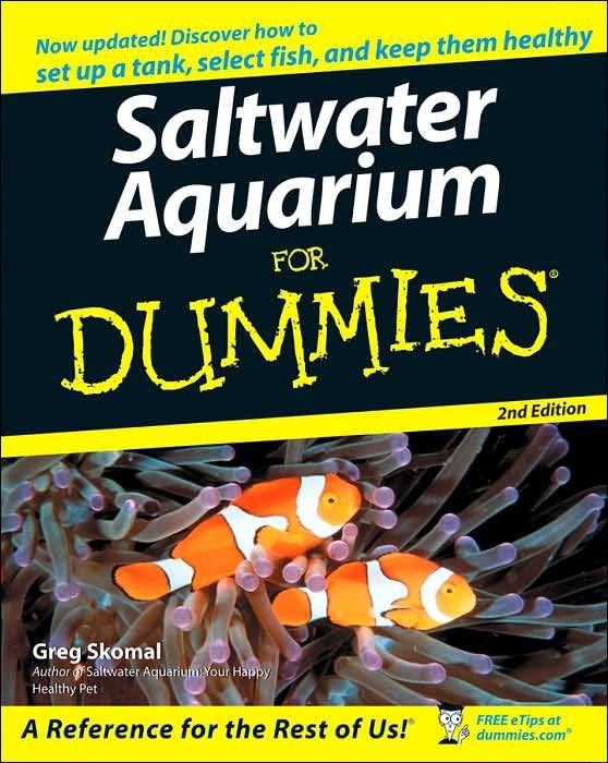 17 best images about someday saltwater tanks on pinterest for Good beginner fish