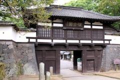 長野県小諸市の懐古園 樹齢500年といわれるケヤキの大樹は圧巻です歴史と共に育った大樹は昔の人たちも見てきたんだろうなあと思うとつい物思いにふけってしまいます tags[長野県]