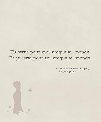 """""""Tu seras pour moi unique au monde"""" - Citation du """"Petit Prince"""""""