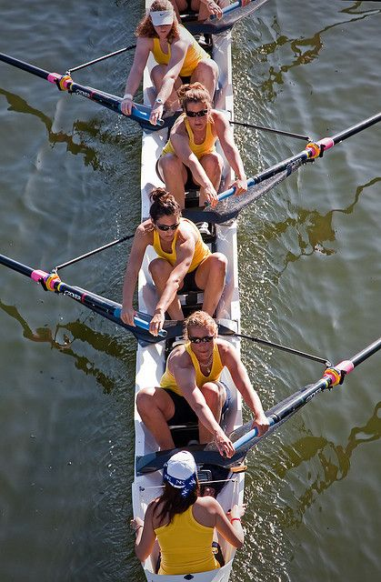 This is a great photo showing how your shoulders follow the angle of the oar at the catch ... But your head is still in line