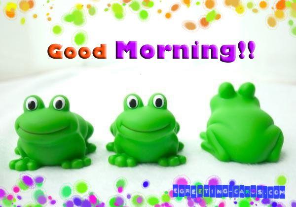 Good Morning Greeting Cards : Funny good morning greeting card