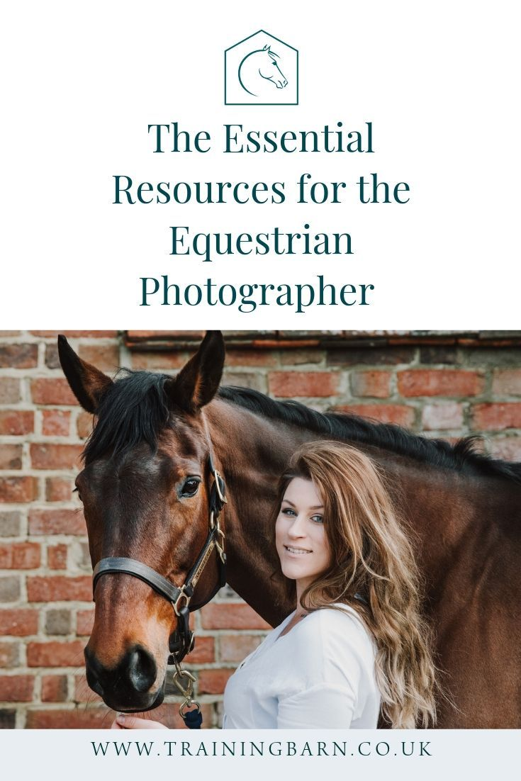 Our Top List Of Essential Resources For All Equine Photographers Horse Smiling The Pony Club Equine Photography