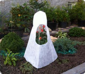 Укрытие роз на зиму - описание, размножение, уход, посадка, фото, применение в саду, сорта и виды