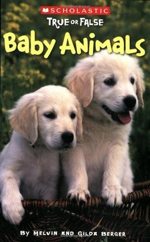 Scholastic True or False: Baby Animals - ANIMAL LIFE CYCLES