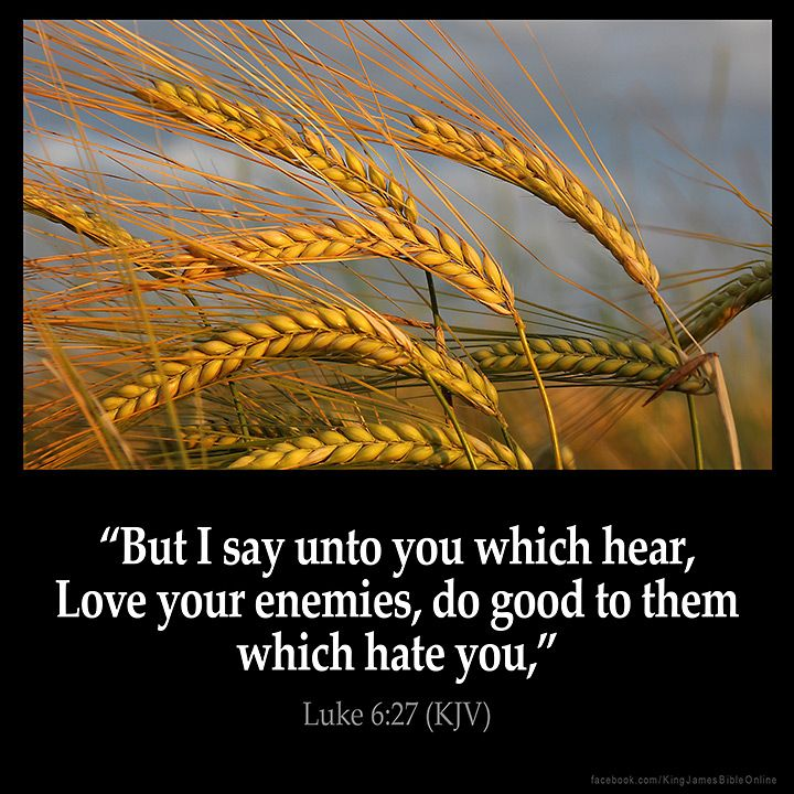 Luke 6:27  But I say unto you which hear Love your enemies do good to them which hate you  Luke 6:27 (KJV)  #Bible #KJV #KingJamesBible #quotes #love  from King James Version Bible (KJV Bible) http://ift.tt/29HWOr5  Filed under: Bible Verse Pic Tagged: Bible Bible Verse Bible Verse Image Bible Verse Pic Bible Verse Picture Daily Bible Verse Image King James Bible King James Version KJV KJV Bible KJV Bible Verse Luke 6:27 Pic Picture Verse         #KingJamesVersion #KingJamesBible #KJVBible…
