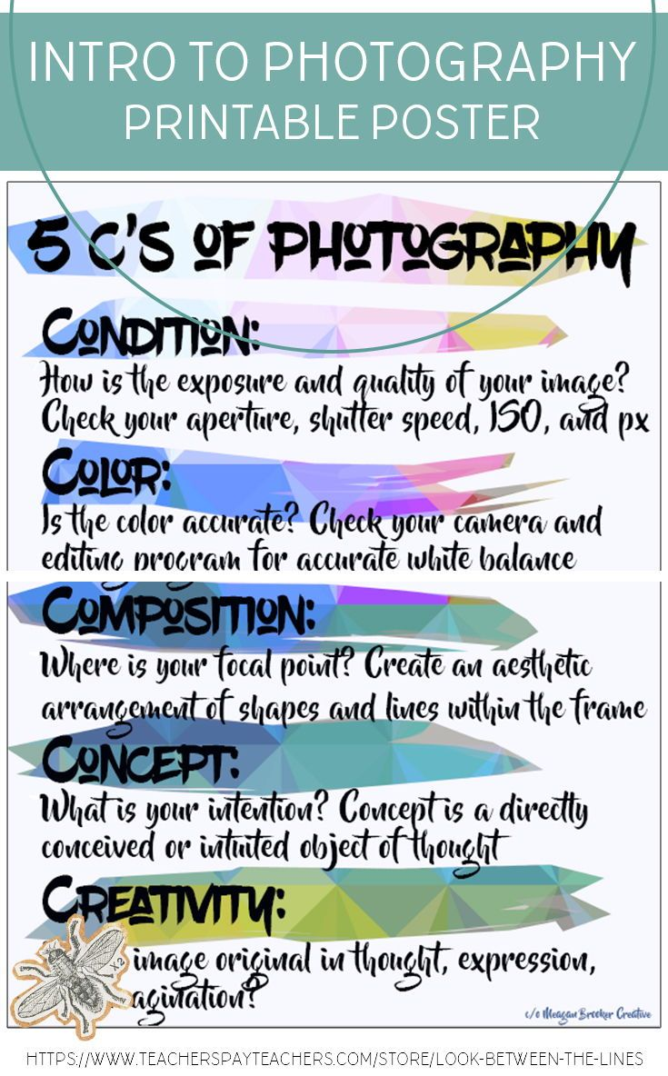 Introduction To Photography The 5 Cs Of Printable Poster