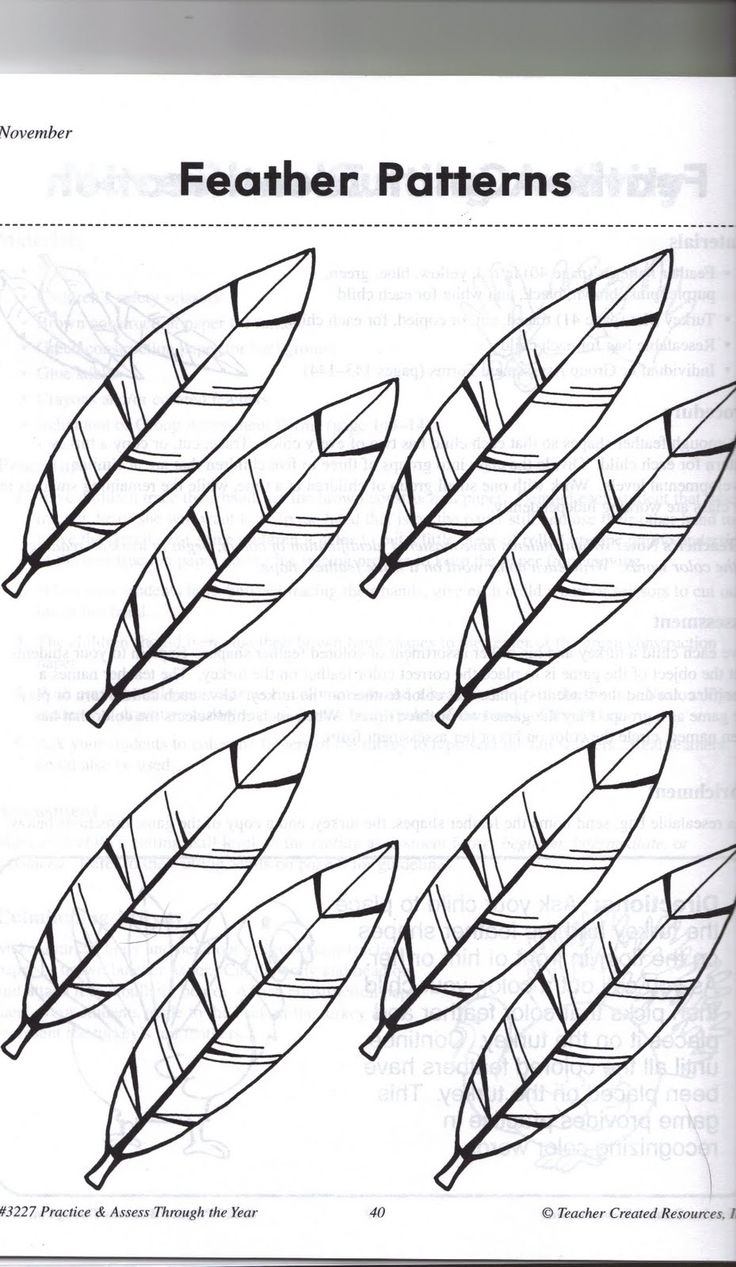 indian feathers coloring page - 25 unique feather pattern ideas on pinterest paper