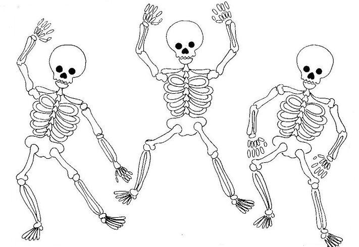 Esqueleto Humano Para Imprimir