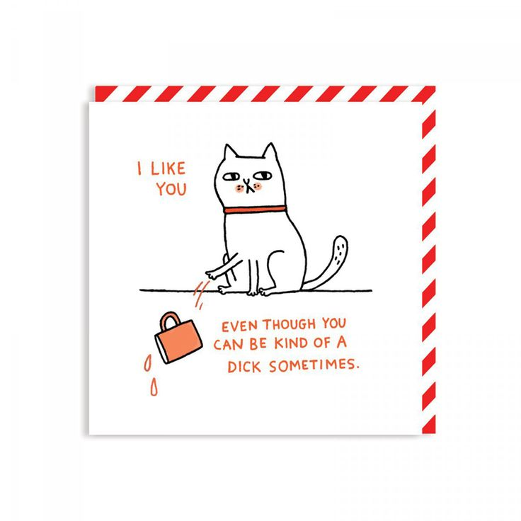 Celebrating National Cat Day with some cat greetings cards by Gemma Correll