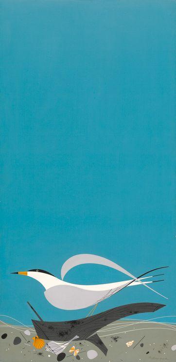 Tern...Charley Harper