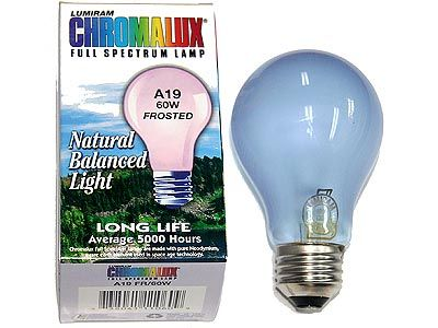 17 Best Ideas About Full Spectrum Light On Pinterest Hunting Equipment Ghost Hunting
