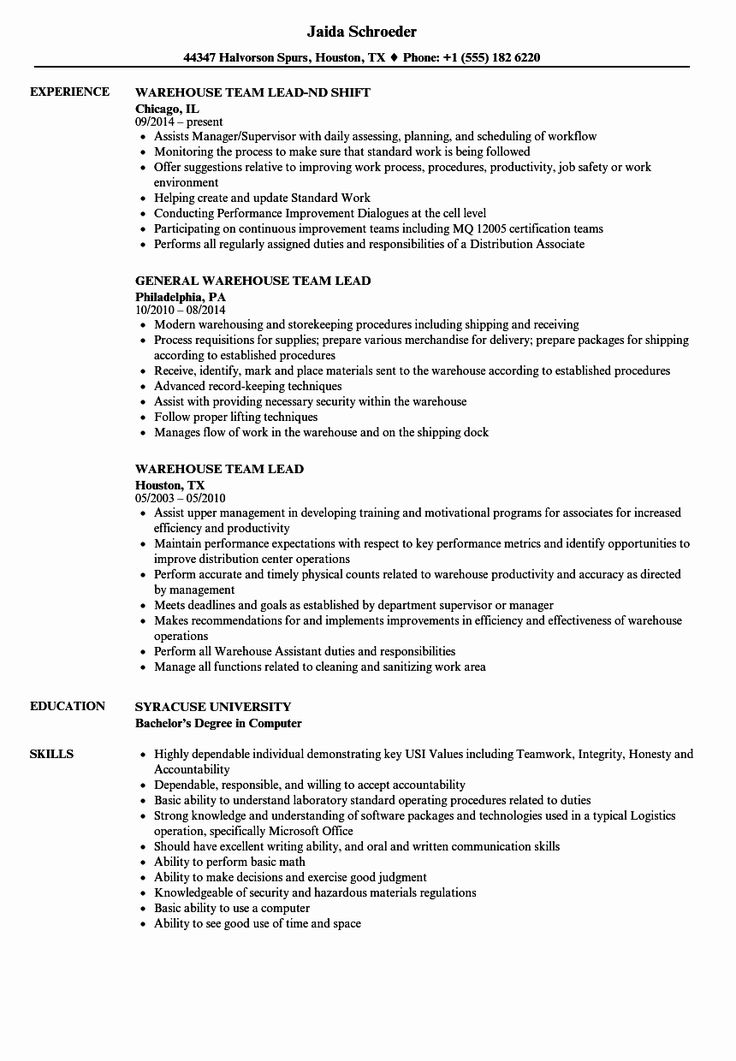23 Team Lead Job Description Resume in 2020 Nursing