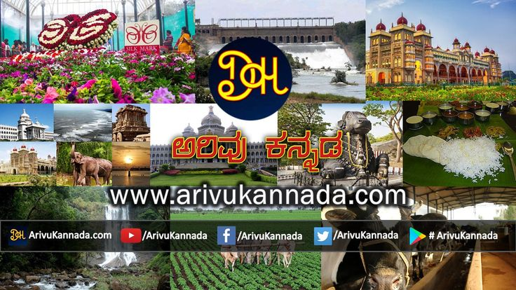 Welcome to Arivu Kannada Website. In Arivu Kannada Website we publish quality information which is unique and useful. In this website you will get instant updates about Health Tips, Lifestyle, Horoscope, Spiritual, Science & Technology, News, Videos, Movie Reviews and many more useful & unique Information which Keeps you entertained and informed in Kannada.