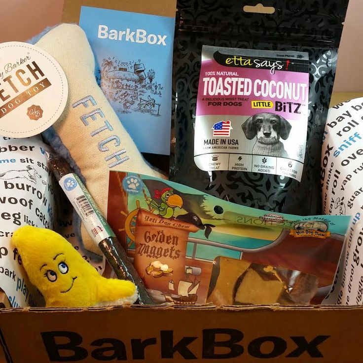 59 best pet subscription box reviews and coupon codes images on bits and boxes barkbox march 2015 island paradise review and free negle Choice Image