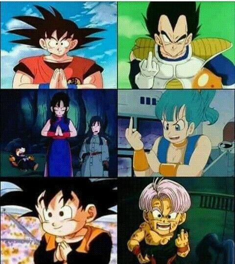 La difference entre la Familie de goku et celle de vegeta!