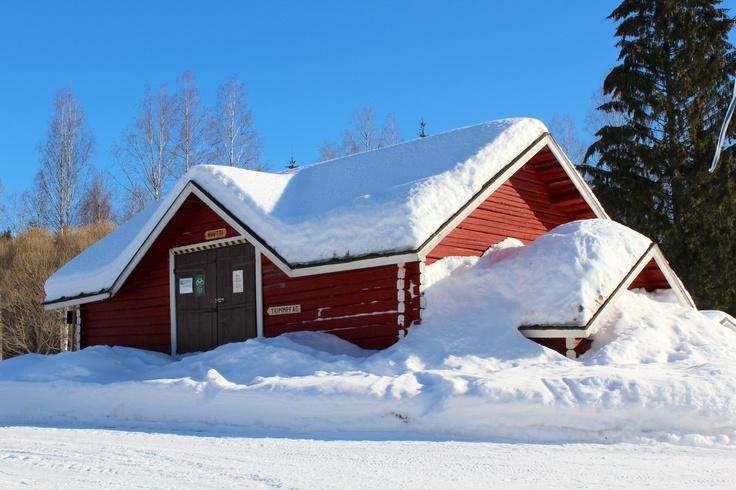 Winter in Punkaharju 3
