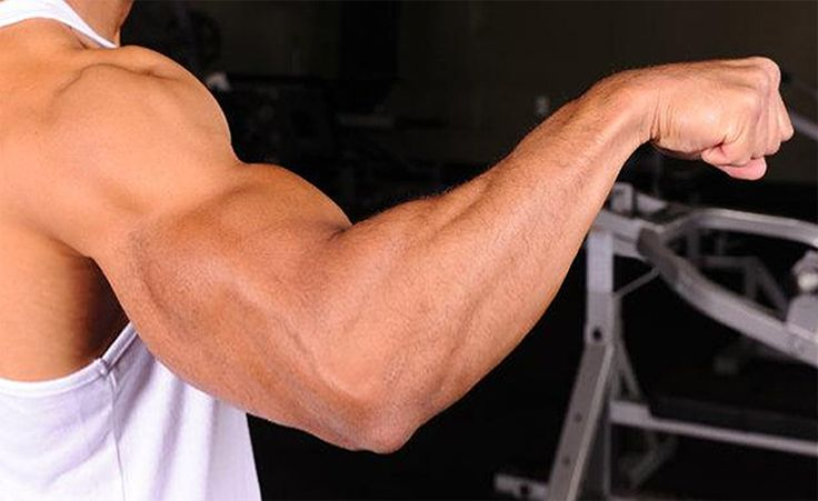 http://keepfitkingdom.com/wp-content/uploads/2016/04/7-Top-Forearm-Building-Benefits-and-Tips-Keep-Fit-Kingdom-770x472.jpg