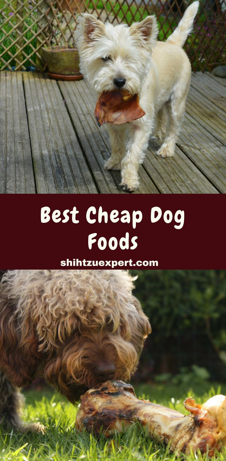 Best Cheap Dog Foods High Quality Brands That Are Still Affordable [Under $1 per pound!]