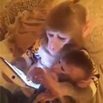 Mother and child viewing images on a tablet   Gif Finder – Find and Share funny animated gifs
