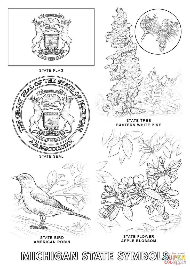 Michigan State Symbols | Super Coloring