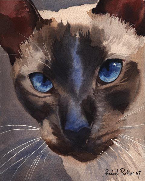 Prince Charmant, peintures de chat