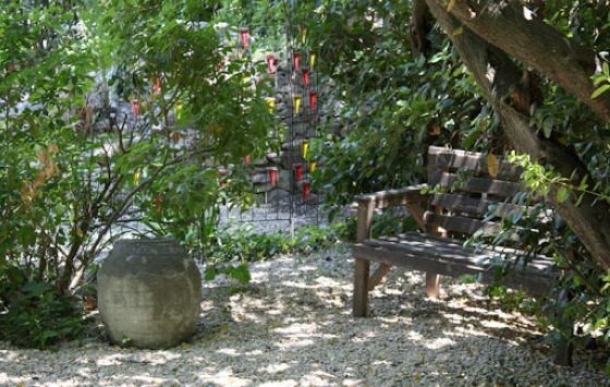 The front garden.