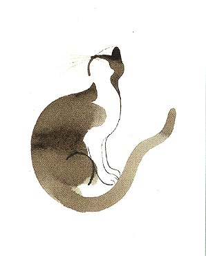 Cat illustration by Aurore de la Morinerie