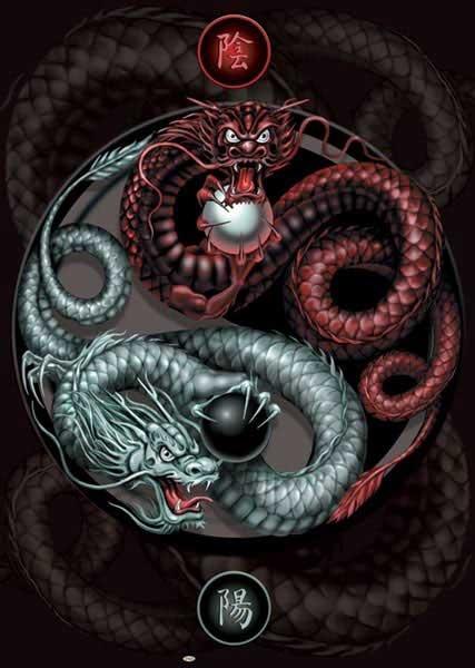 Yin Yang Guardians - Dragons
