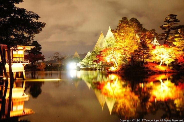 日本|石川|雪吊りのライトアップ「兼六園」