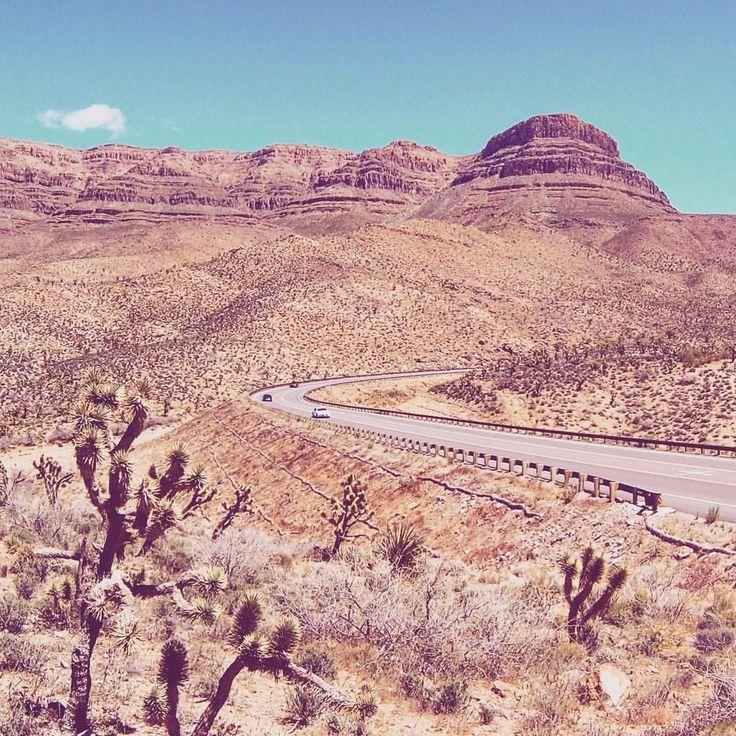 """22 Me gusta, 1 comentarios - Pablo Ilescas (@taxitijuana) en Instagram: """"Buscando al Coyote Willy, bip! bip! , , , #Arizona #meadviewarizona #meadview #meadviewaz…"""""""