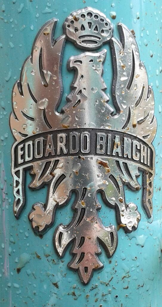 #BianchiHeadBadge