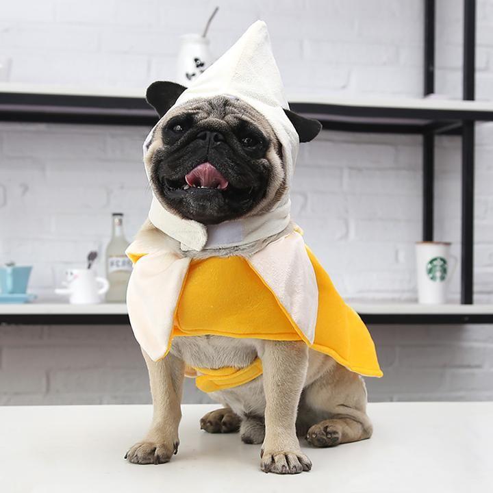 Funny Peeled Banana Fruit Costume For Dog Dog Halloween Costumes Cute Dog Costumes Cute Dog Halloween Costumes