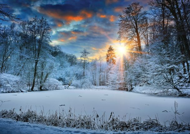 100 best nature scenic cards images on pinterest greeting cards business greeting cards holiday cards corporate holiday cards and m4hsunfo