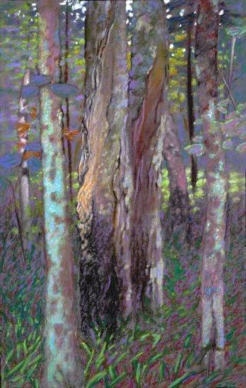 Rick Stevens: Forest Near Justice Bay, pastel