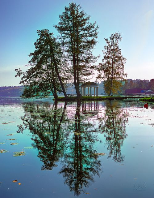 ~~Clarity and harmony ~ tree reflection, Dalsland - a part of west Sweden with many small lakes by Filip Nystedt~~
