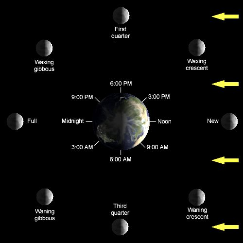 Did you know that you can see the Moon during the day? Many people only notice our Moon at night, when there is considerably more contrast between the Moon and the night sky. Being the second brigh…
