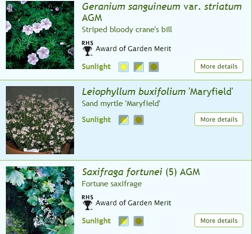 12 Best Shade Rock Gardens Images On Pinterest Garden Plants Shade Plants And Shadow Plants