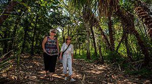 Walks in the South Alligator region, Kakadu National Park