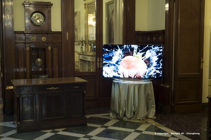 """Esposizione #TV #Changhong - Società del Giardino"""" Milano - Trofeo Alberto #Pellegrino"""