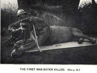 Tsavo Man Eaters – Chicago, Illinois | Atlas Obscura