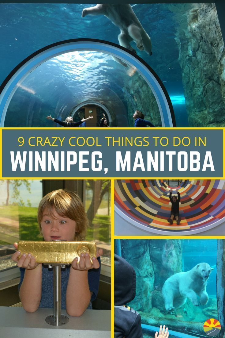 From Polar Bears to Human Rights to a $750,000 gold bar you can hold you don't want to miss this list of tips and ideas for crazy cool things to do in Winnipeg! This is one of the best destinations in Canada, with plenty to do with or without kids. Be sur