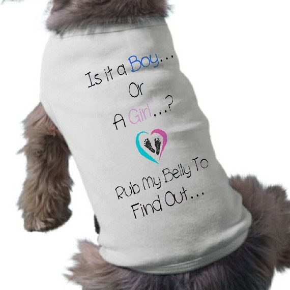 Baby Gender Reveal Dog T-Shirt - Pregnancy Announcement Pet Shirt - Pet Graphic Tee on Etsy, $20.00