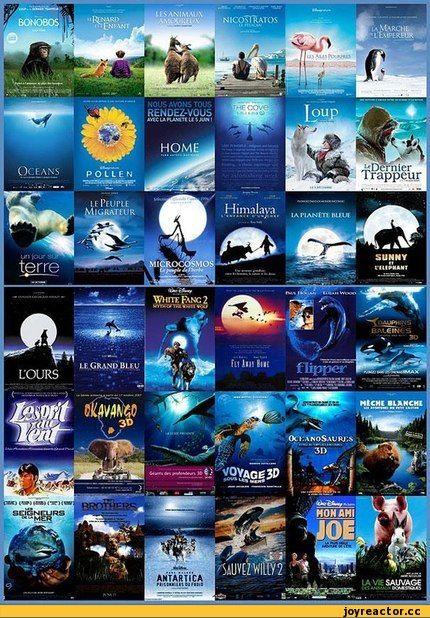 6.Расплескалась синева Обложки и постеры с преобладанием голубого и аквамаринового тона – практически всегда сигнализируют о «семейном» характере киноленты. Очень часто так оформляют фильмы приключенческие фильмы и фильмы о животных (в том числе документальные). Примеры: «Аватар», «Птицы», «Большое путешествие вглубь океанов 3D», «Флиппер».