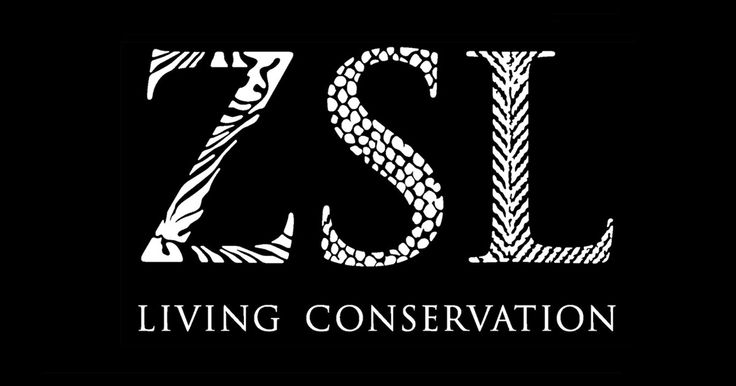 Zoological Society of London Award   Short field expeditions to address field conservation, threatened species outside Europe and N.America. At least 20 and UK resident/university. For small teams. £2,000.